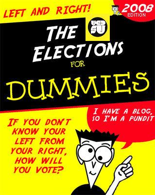 Elezioni per dummies