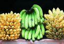 Addio, banane